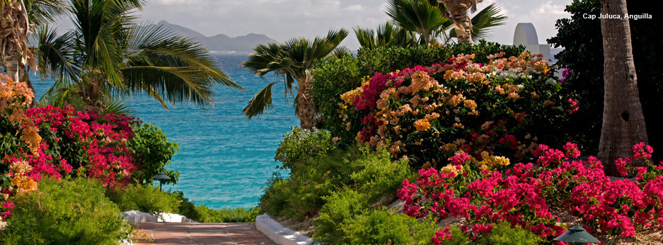 Beautiful gardens in Cap Juluca, Anguila, The Caribbean