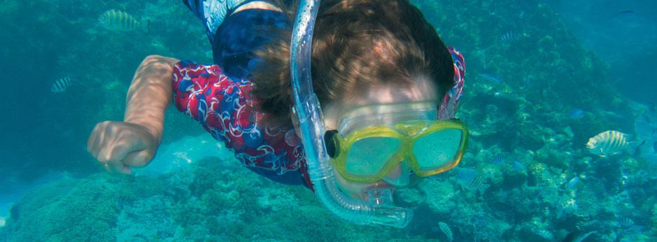 Snorkelling off Bora Bora