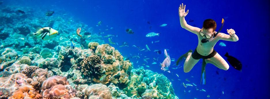 Maldives - boy diving