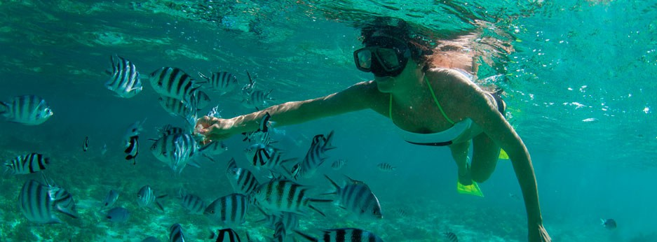 Mauritius: girl diving