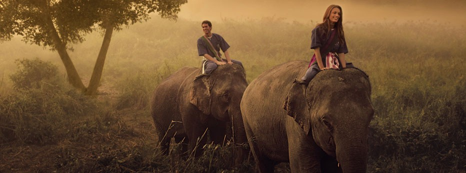 Riding elephants in Indochina, courtesy of Indus Experiences